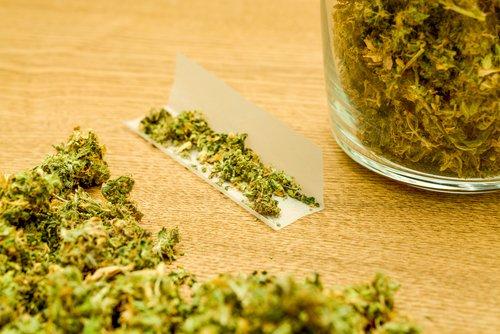 marihuana populair jongeren