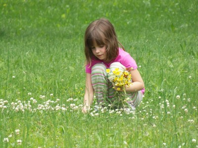 picking-flowers-391610_1280