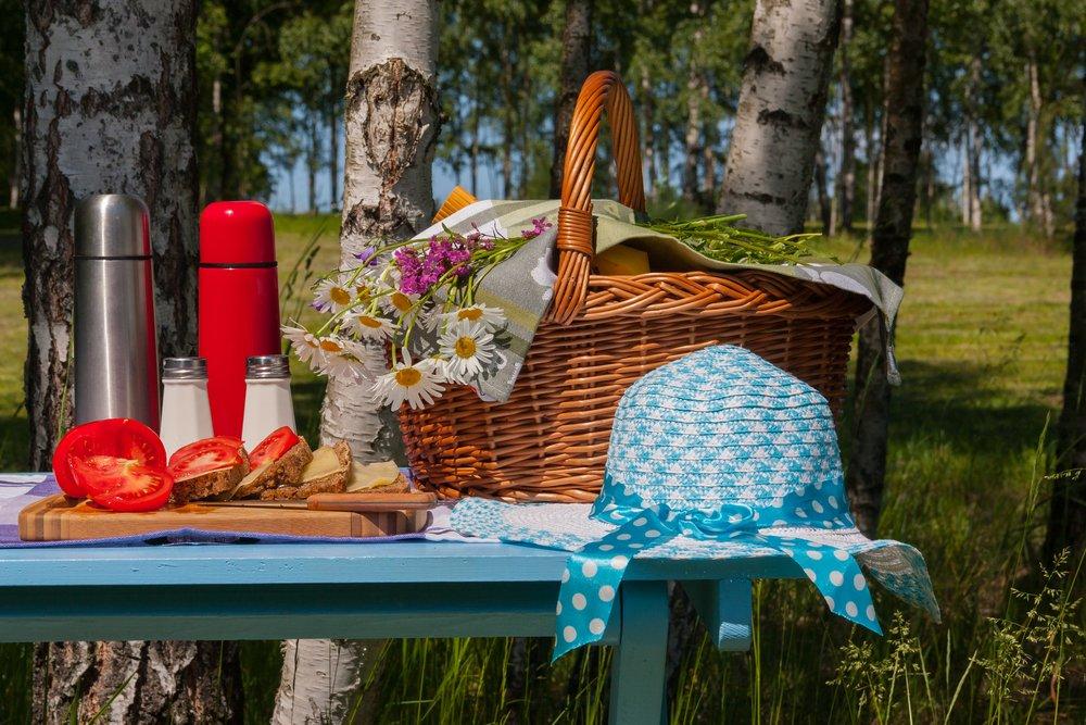 Picknicken Texel