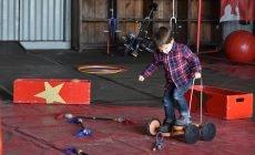 Circus Kristal Pllek