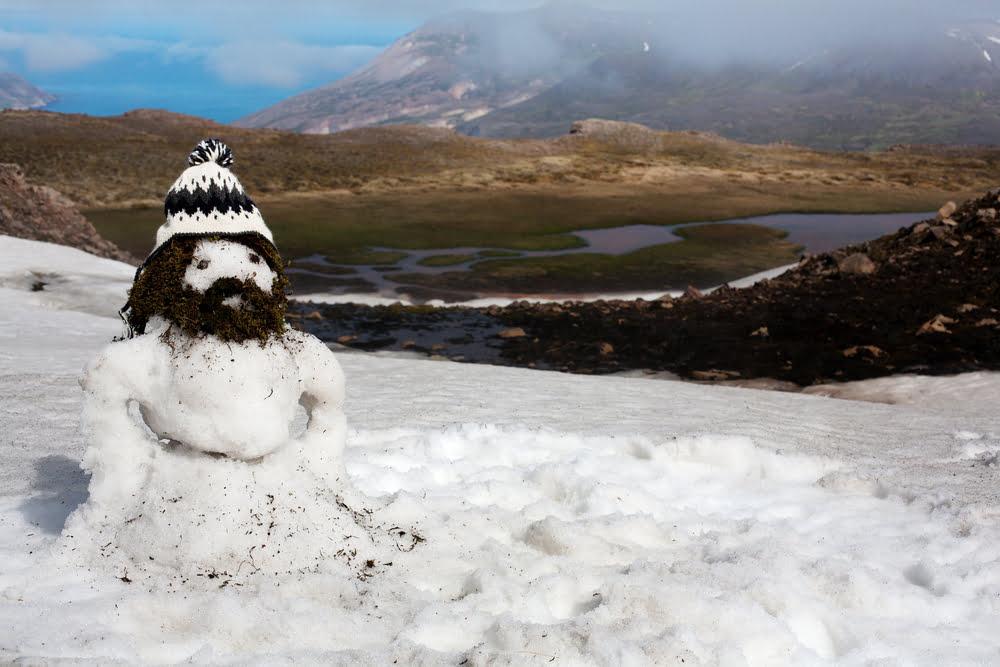 Creatieve sneeuwpoppen